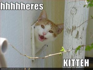 Here's Kitty