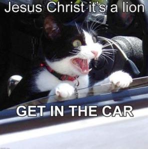 Tux Lion